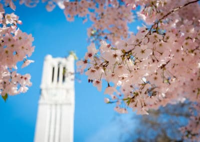NC State's famous Belltower