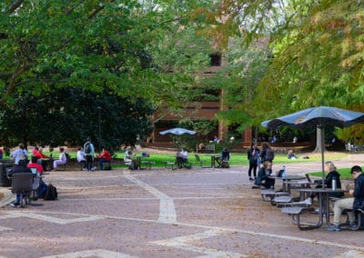 Students studying in the brickyard