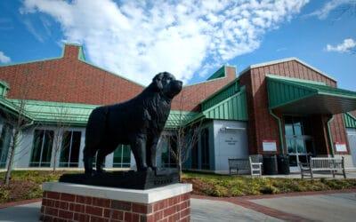 NC State Veterinary Hospital